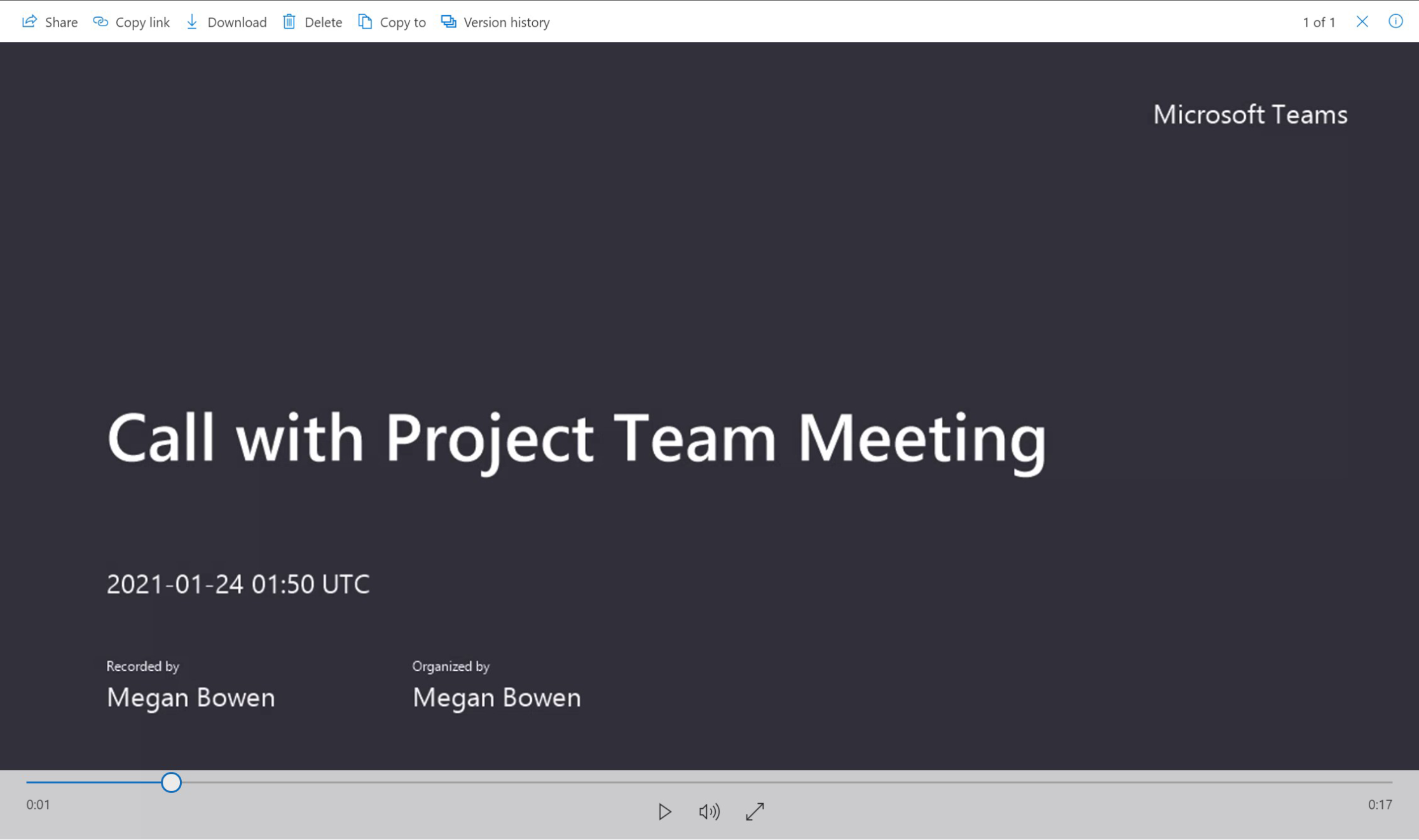 Call with Project Team Meeting